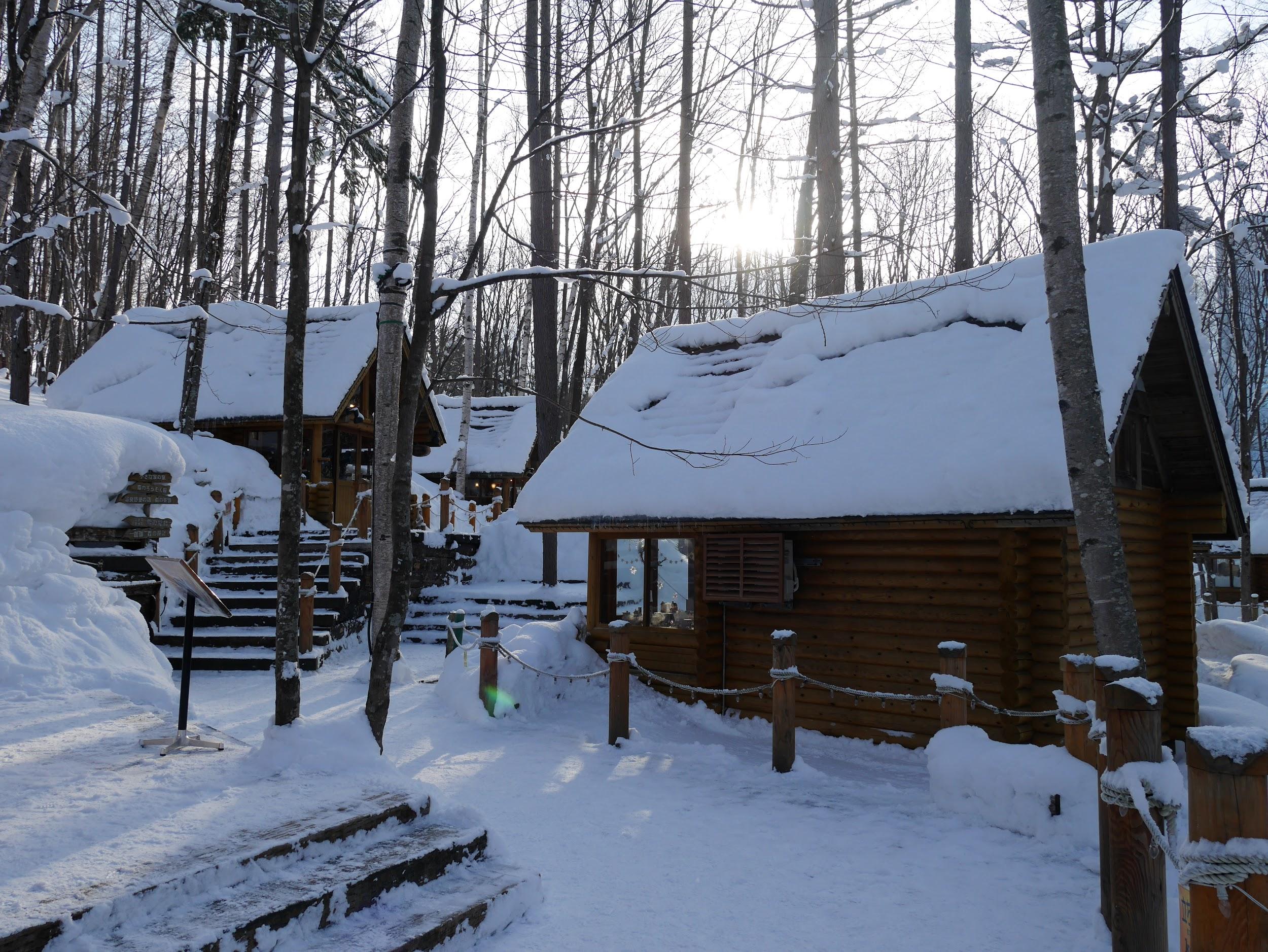 在冬季去富良野來場小旅行如何?