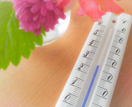 北海道人的氣溫與室溫感覺大解析!