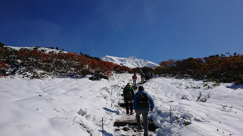 北海道旭岳初冠雪!與紅葉相互輝映的絕景